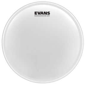 Evans 14'' UV1 Coated